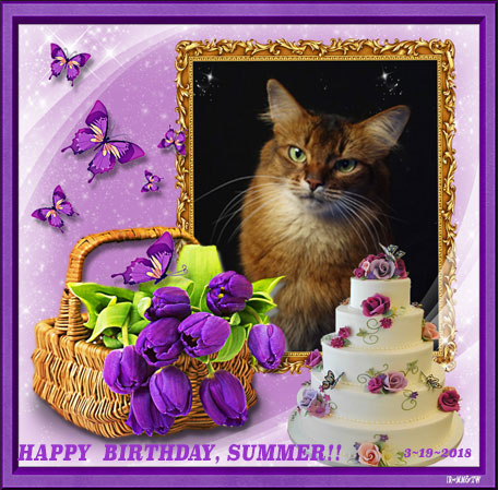 Summer's birthday graphic from Pipo and Dalton