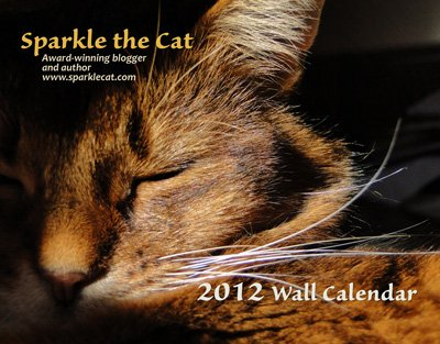 My awesome 2012 wall Calendar!