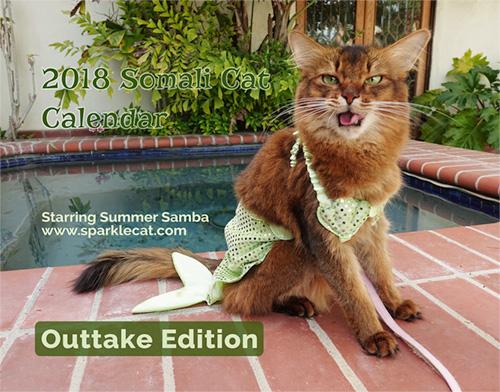 Summer's 2018 outtake calendar