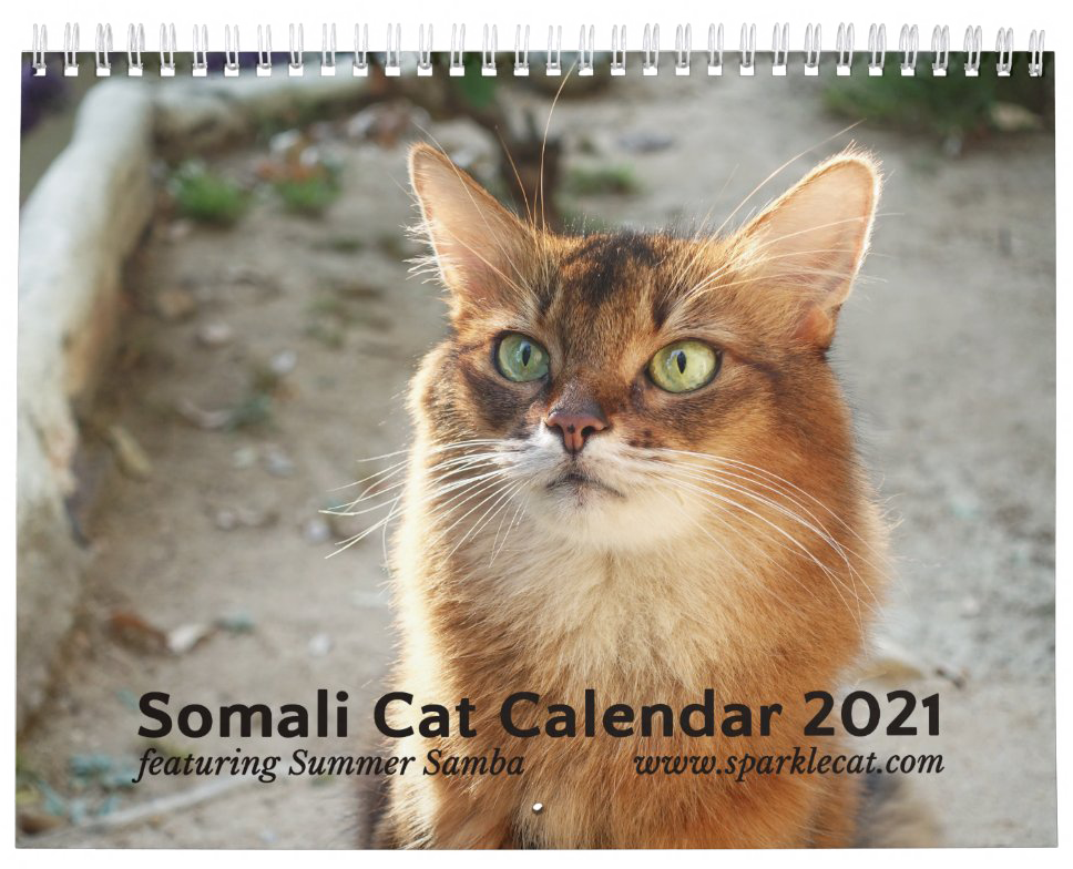 The real 2021 calendar cover