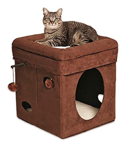 fancy and cool cat beds sparklecat. Black Bedroom Furniture Sets. Home Design Ideas