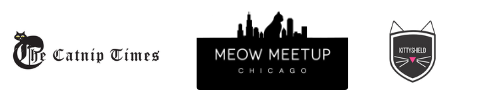 Meow MeetUp graphic
