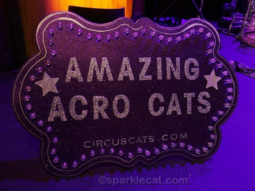 the Amazing Acre-Cats sign