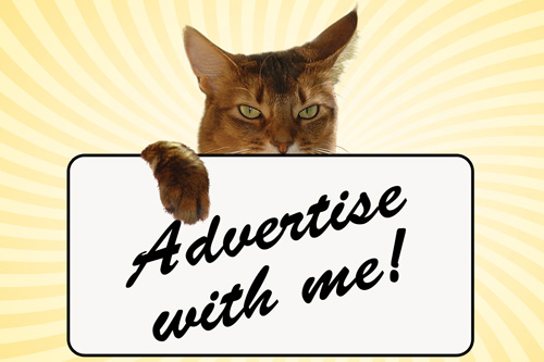 Advertise with Sparkle