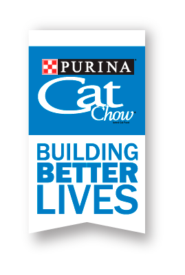Building Better Lives logo