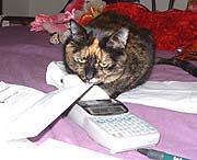 Take THAT, calculator tape!