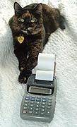 She loves killing the calculator tape