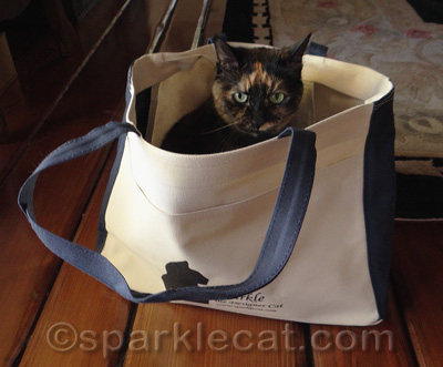 I think she is wondering why her silhouette isn't on the tote.
