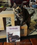 Yogi Cats and Tortitude Giveaway Winners