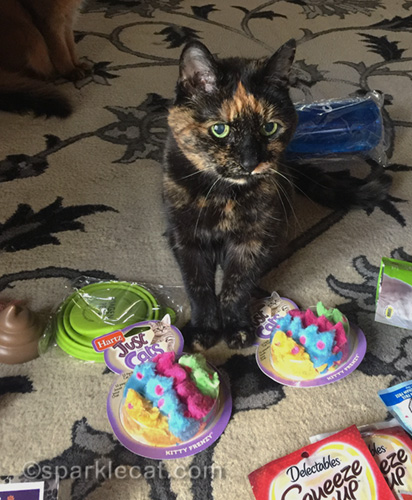 tortoiseshell cat with two packages of mousie toys