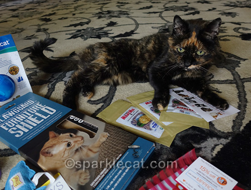 tortoiseshell cat taking possession of swag