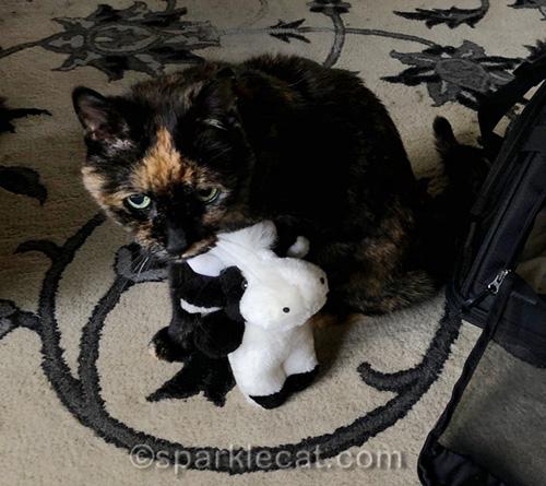tortoiseshell cat with plush cow