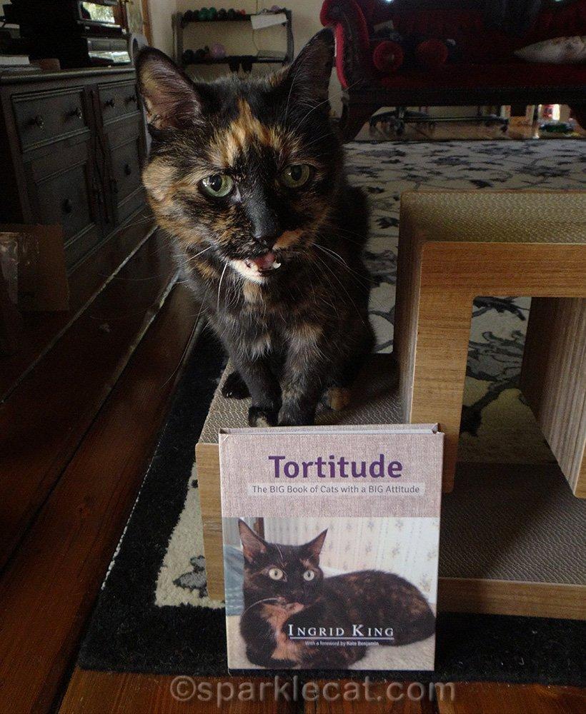 tortoiseshell cat with tortitude book