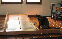 And no, Binga didn't help destroy the shutters. Suprisingly.