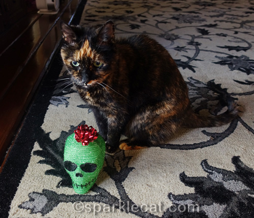 unamused tortoiseshell cat with green skull