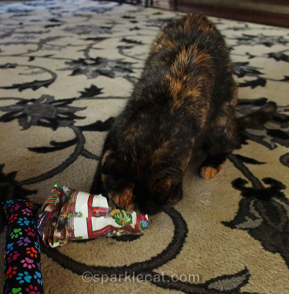 tortoiseshell cat with her face in wrapping paper.
