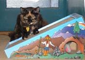 High on catnip, ruler of the Alpine Scratcher