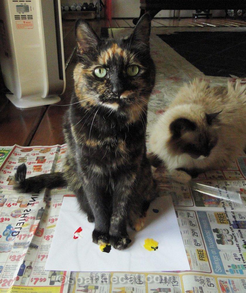 Tortoiseshell cat sitting on the cat art painting