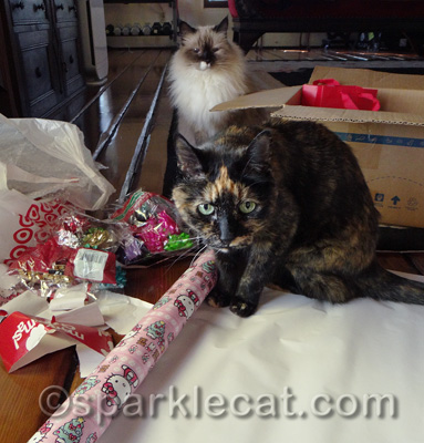 These gifts may have an extra-strong tortie scent