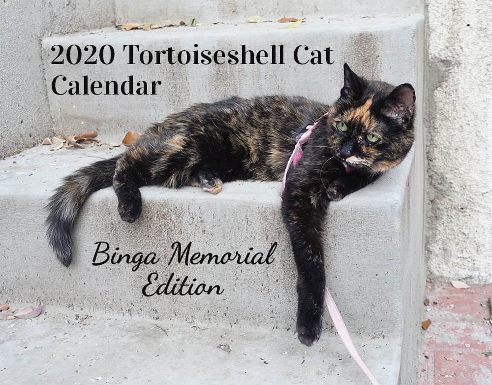 cover of Binga's calendar