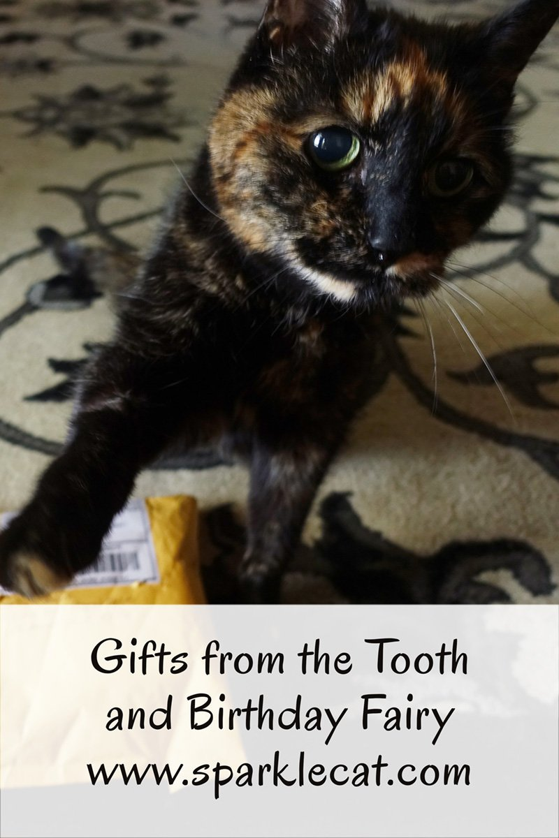 Binga and Summer get gifts from tooth and birthday fairy, respectively.