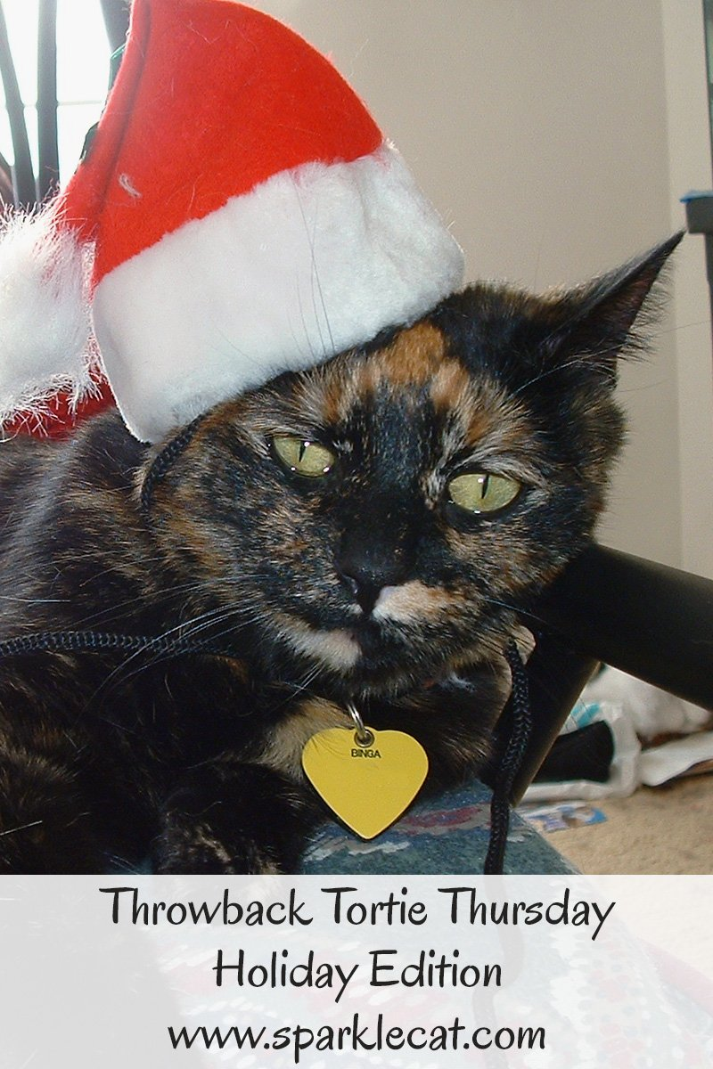 Summer shares holiday photos of Binga from 2003 for Throwback Tortie Thursday.