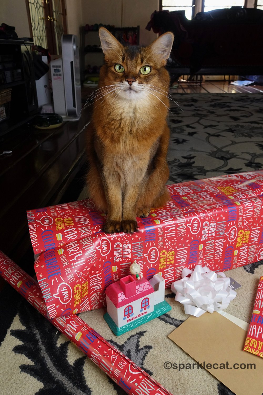 Gift Wrapping Supervision