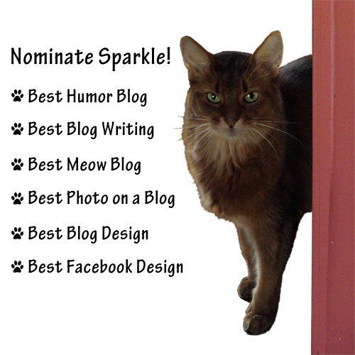 Here are the categories I could be nominated for!