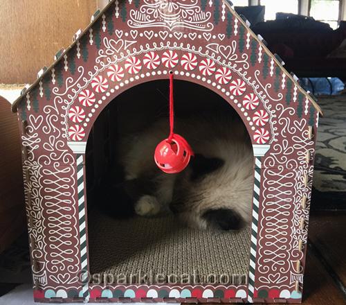 ragdoll cat sleeping in gingerbread cat scratcher house
