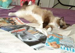If she knew she was surrounded by fitness magazines, she'd be insulted