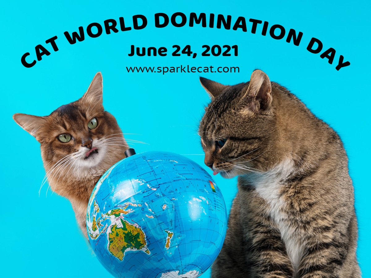 Cat World Domination Day Graphic 2021 Large Size