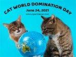 Cat World Domination Day 2021 Medium