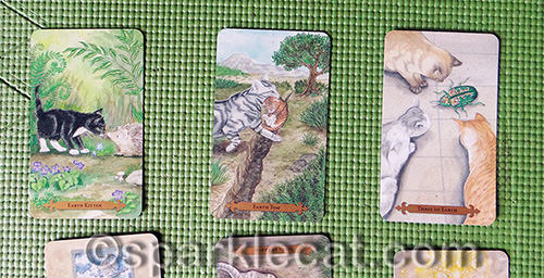 The first three cards in the spread