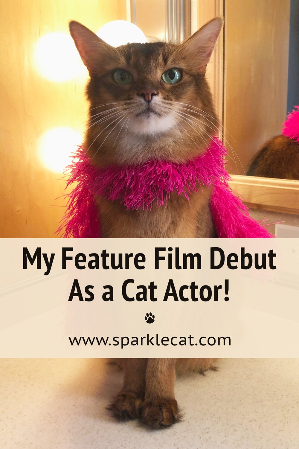 My Feature Film Debut as a Cat Actor Is Out!