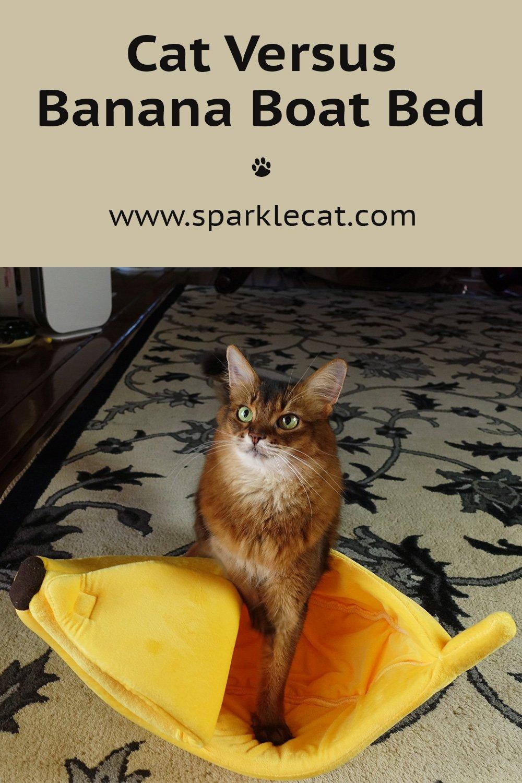 Me Versus the Banana Boat Cat Bed