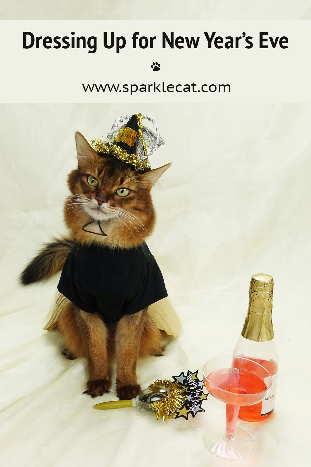 Getting Dressed Up for New Year\'s Eve