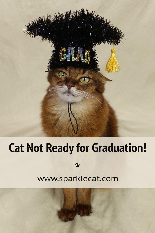 A Graduation Photo Fail Friday