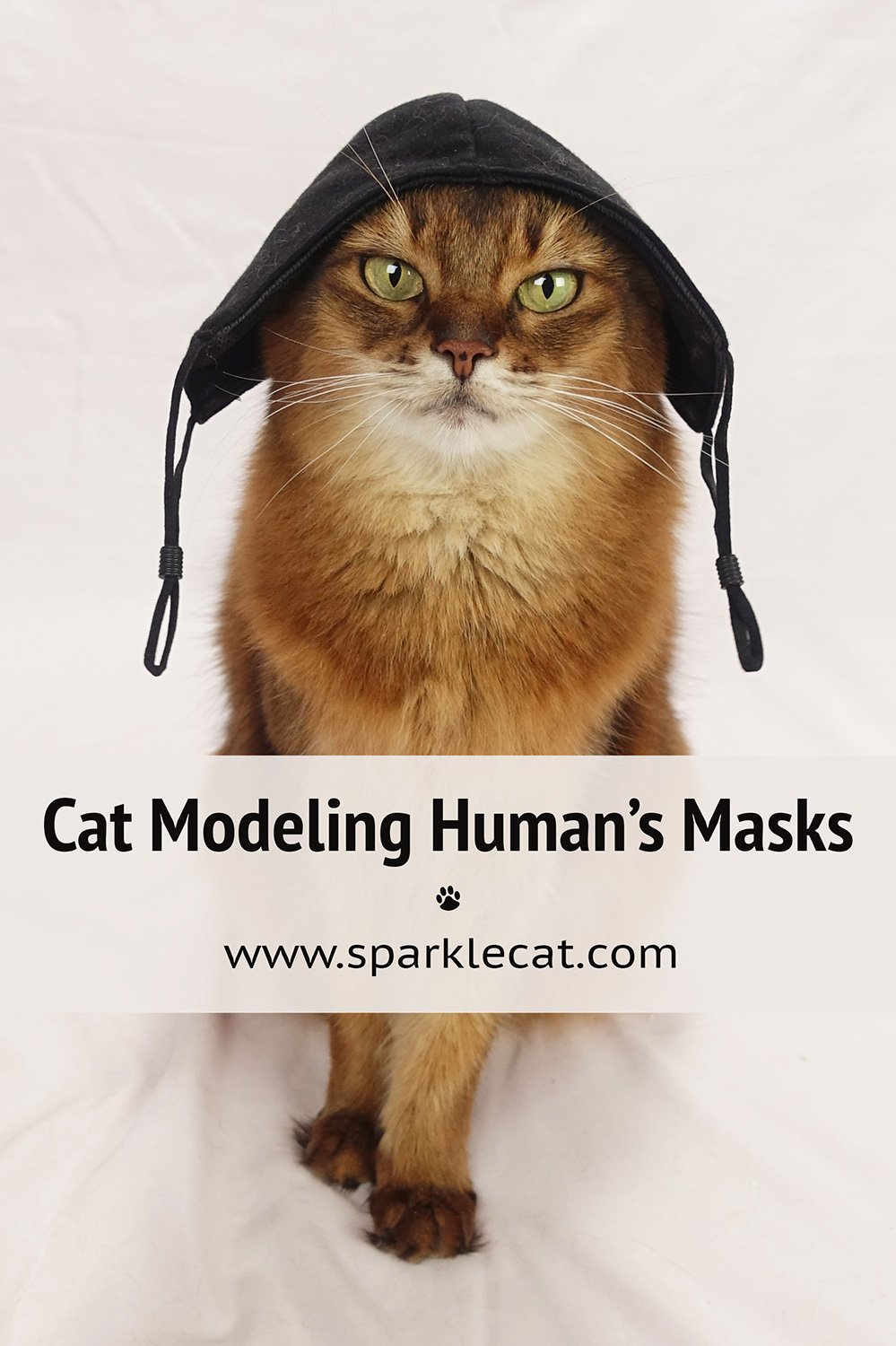 Modeling My Human\'s Masks