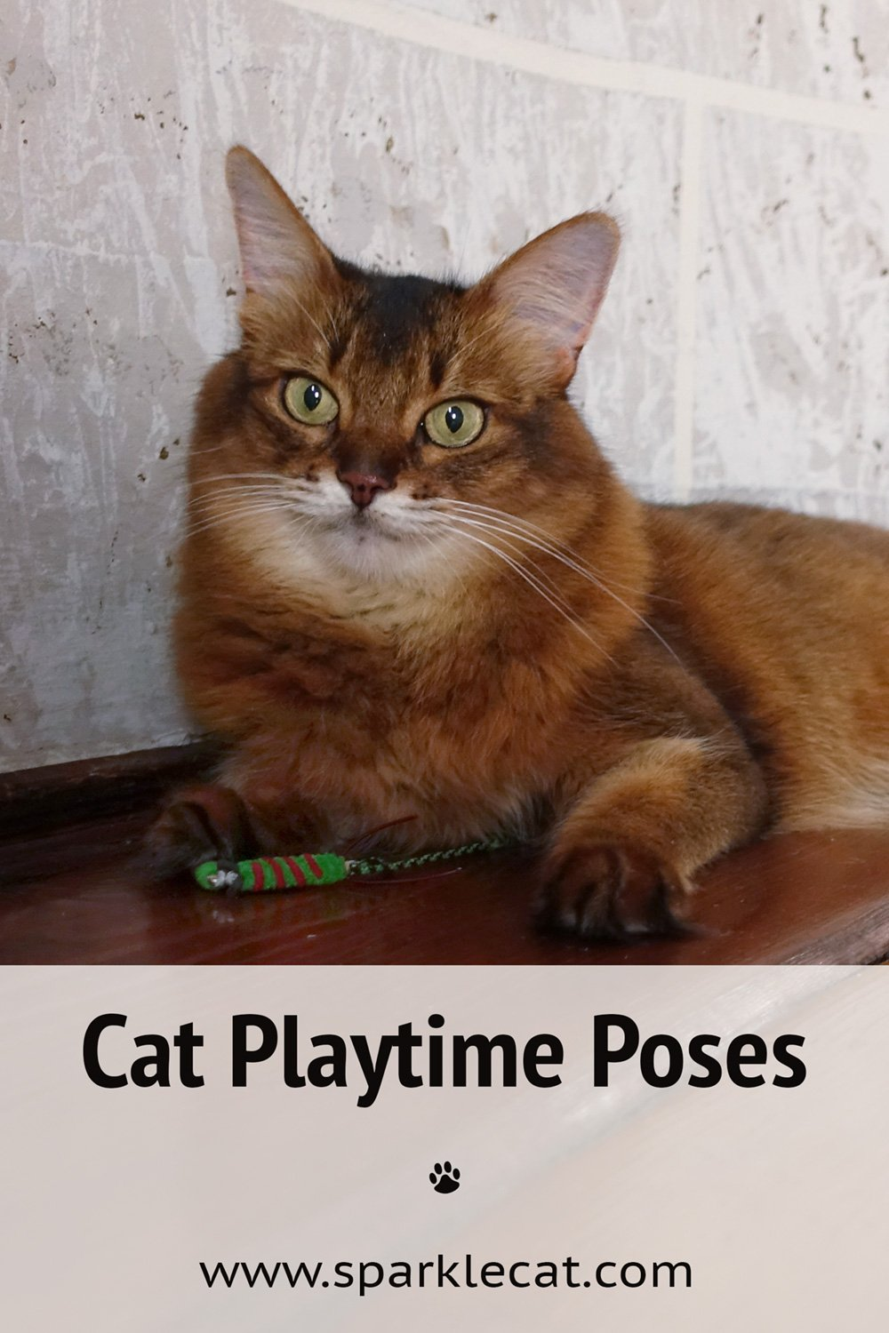 Playtime Poses