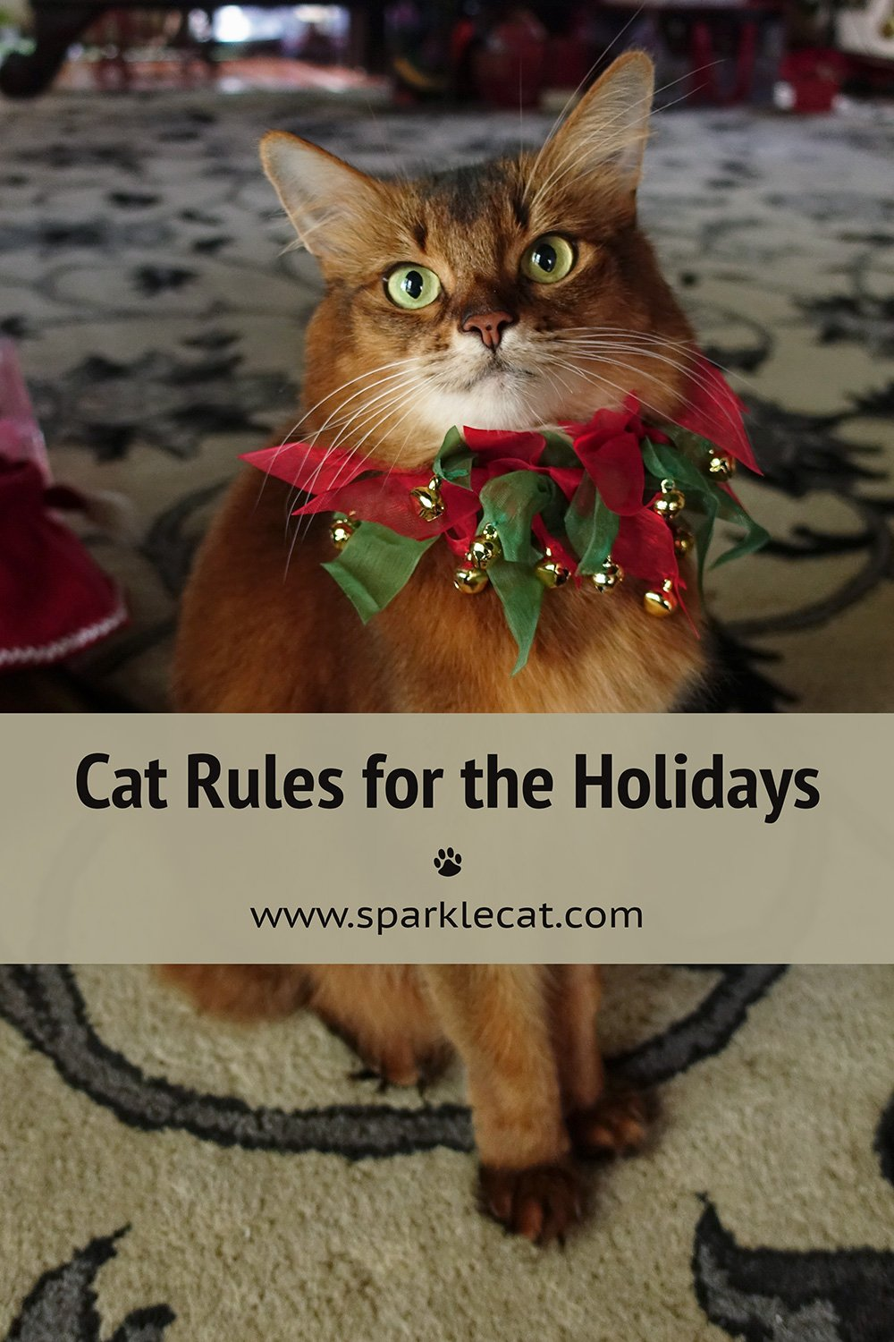 Cat Rules for the Holidays