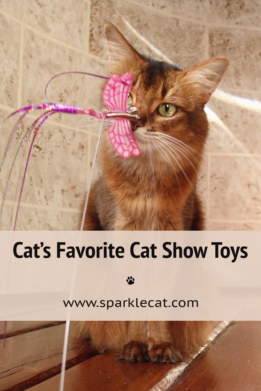 My Cat Show Cat Toys