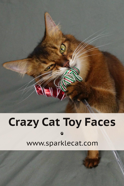 Crazy Toy Faces