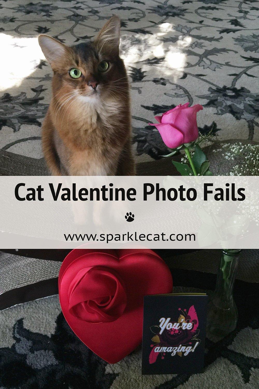 The Valentine FAIL Photo Session