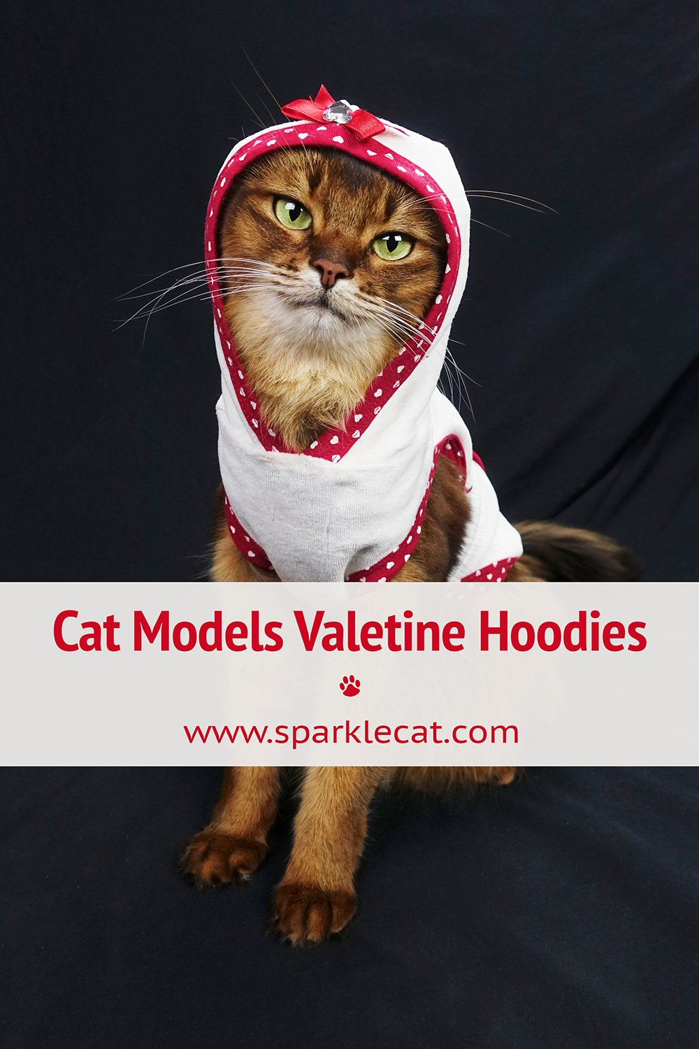My Valentine Hoodies