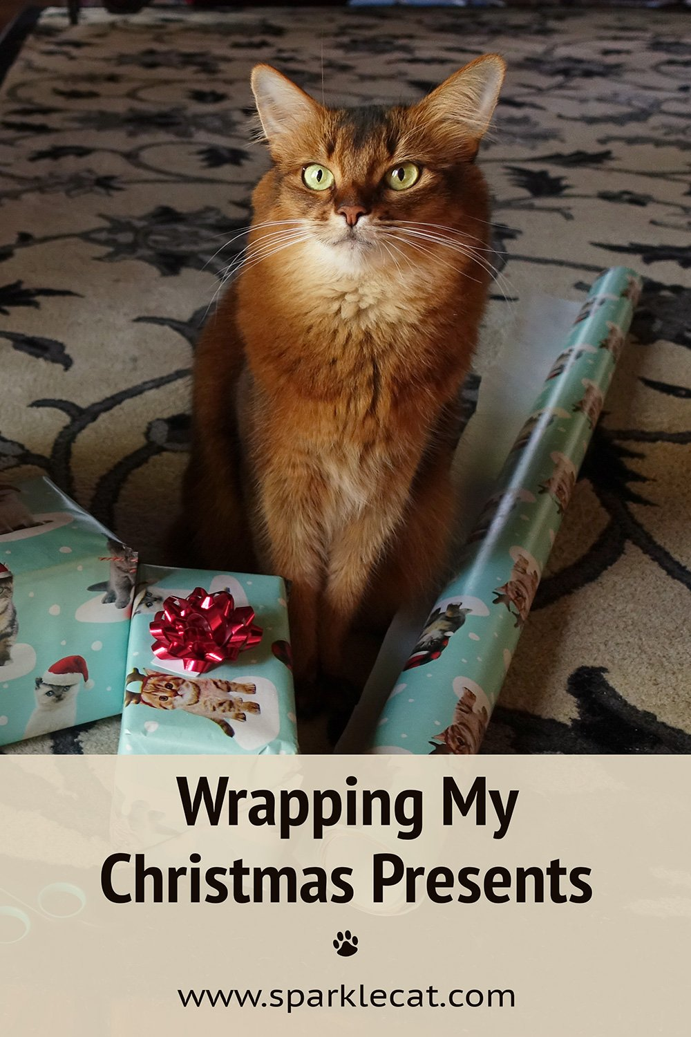 Wrapping My Christmas Presents
