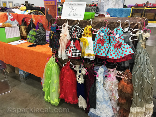 dresses for a fashionista Cornish Rex