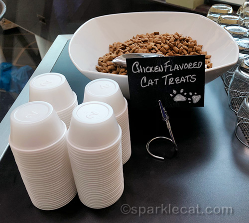 courtesy cat treats from the Hyatt Regency Houston North