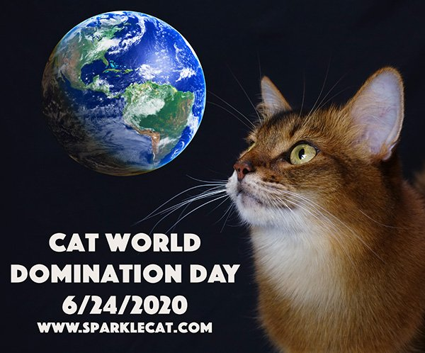 Cat World Domination Day 2020