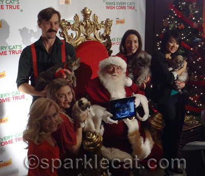 Santa and Angela Kinsey were totally upstaged by the cats