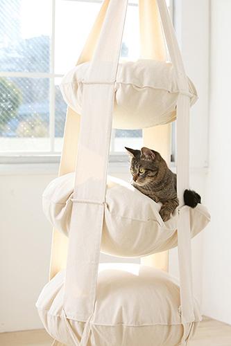 A kitty enjoying the Cat's Trapeze